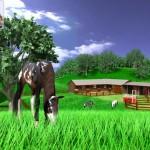 A Virtual Horse - Lovas Játék