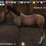 My Horse, lovas játék az app store-ból